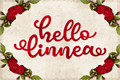 Illustration of font Hello Linnea