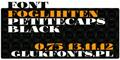 Illustration of font FoglihtenBPS01