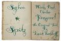 Illustration of font Syphon Spritz