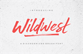 Illustration of font Wildwest
