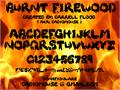 Illustration of font Burnt Firewood