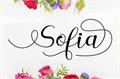 Illustration of font Sofia