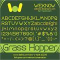 Illustration of font Grass Hopper