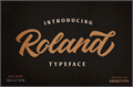 Illustration of font Roland