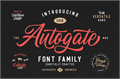 Illustration of font Autogate DEMO