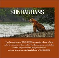 Sample image of Sundarbans font by Arafinduke