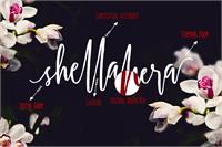 Sample image of Shellahera Script Demo font by Lostvoltype Foundry