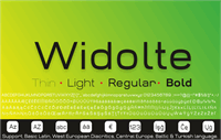 Sample image of Widolte Bold Demo font by studiotypo