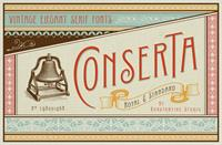 Sample image of Conserta DEMO font by Konstantine Studio