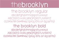 Sample image of the brooklyn font by Brittney Murphy Design