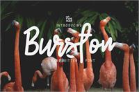 Sample image of Burston Demo font by Mr. Typeman