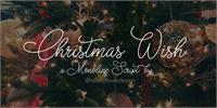 Sample image of Christmas Wish monoline font by Roland Huse Design