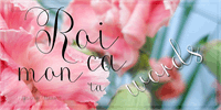Sample image of Roicamonta Words font by AgaSilva