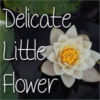 Sample image of Mf Delicate Little Flower font by Misti's Fonts
