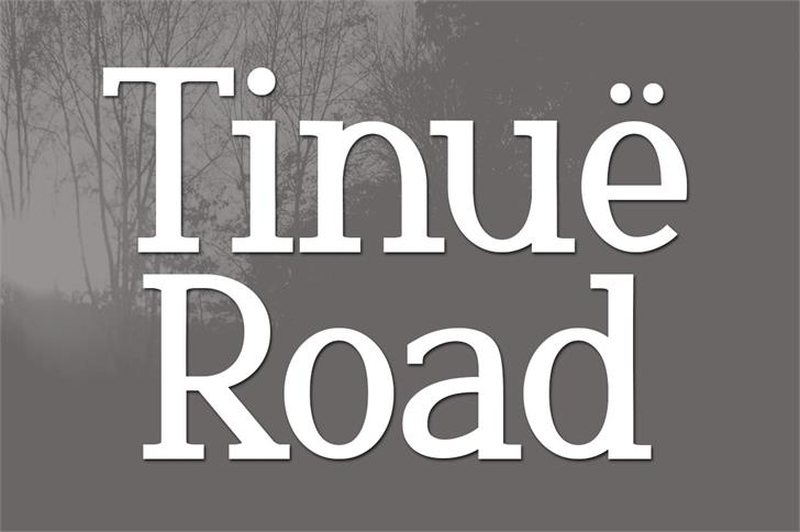 Tinuë Road font by Brittney Murphy Design