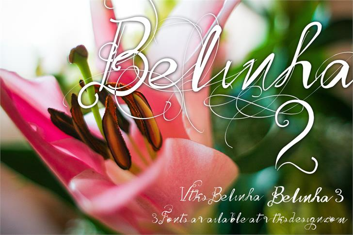Vtks Belinha font by VTKS DESIGN