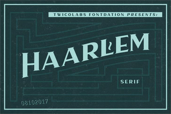 Haarlem Serif Demo font by Twicolabs