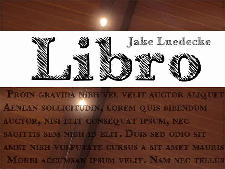Libro font by Jake Luedecke Motion & Graphic Design
