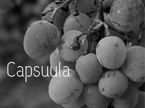 Capsuula font by Henrich Fichna
