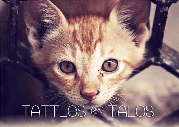 Tattle & Tales font by Font Monger