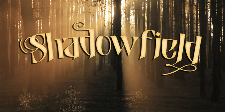 Shadowfield DEMO font by David Kerkhoff