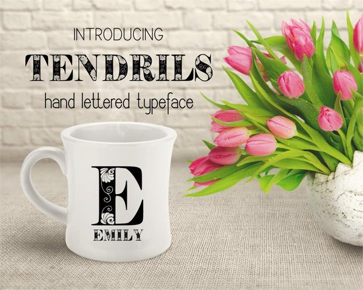 Tendrils font by Eva Barabasne Olasz
