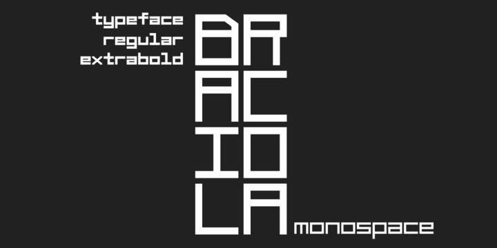Braciola MS font by Zetafonts