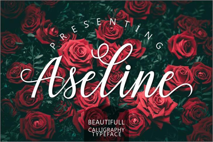 Aseline Script font by Creative LAB