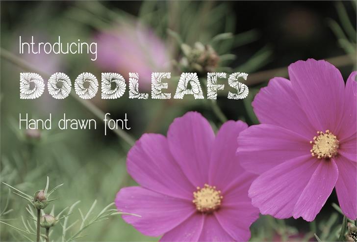 DoodLeafs font by Eva Barabasne Olasz