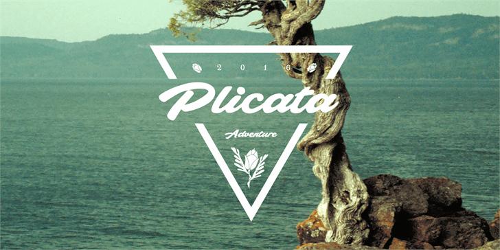 Plicata PERSONAL USE ONLY font by Måns Grebäck