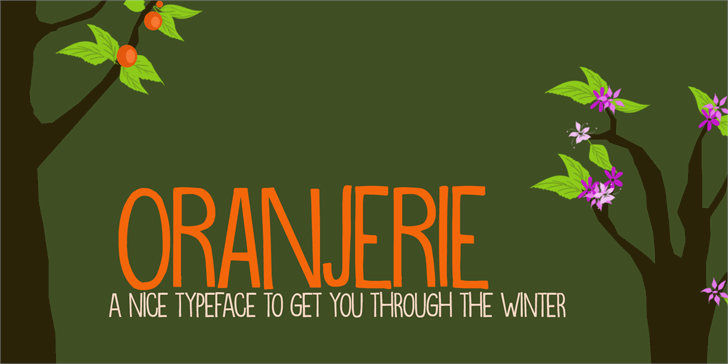 DK Oranjerie font by David Kerkhoff