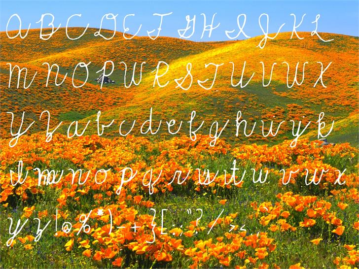 Rolling_Hills font by SiberianHuskyFonts