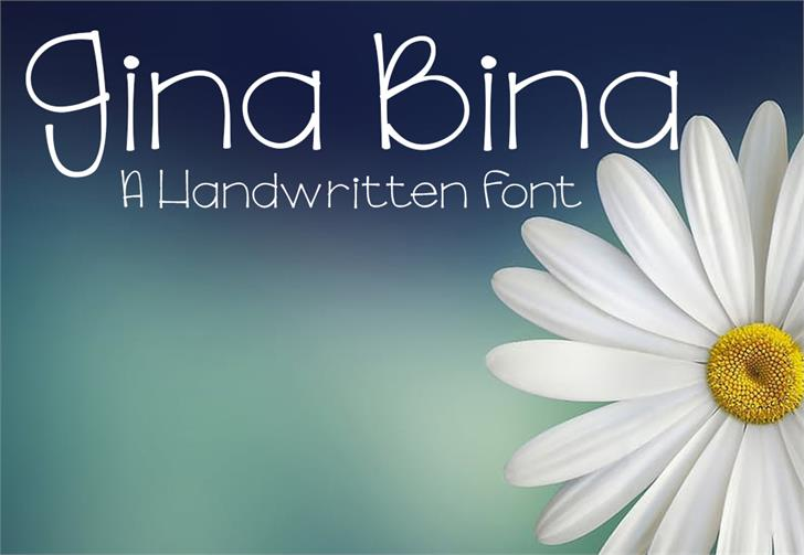 GinaBinaRegular font by GroovyJournal
