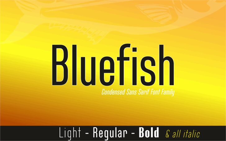 Bluefish Demo font by studiotypo