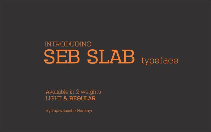 Seb Slab font by sebgarrydesign
