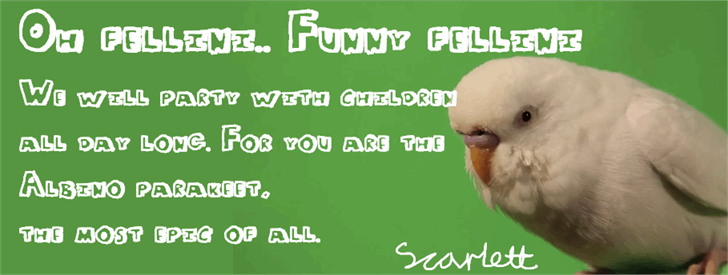 Funny Fellini font by SprayOnDog