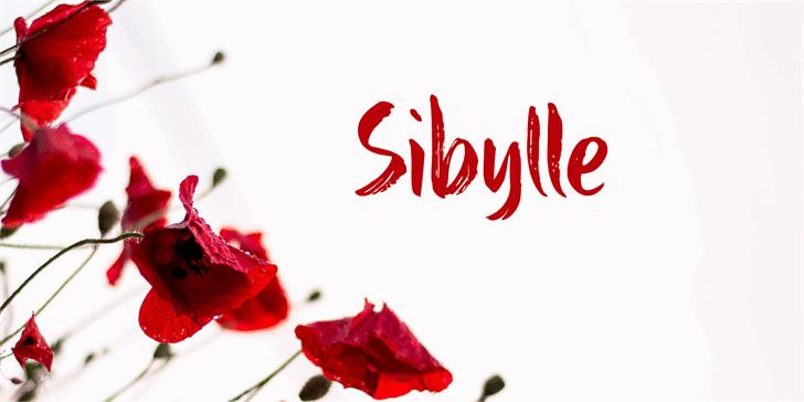 Sibylle DEMO font by David Kerkhoff