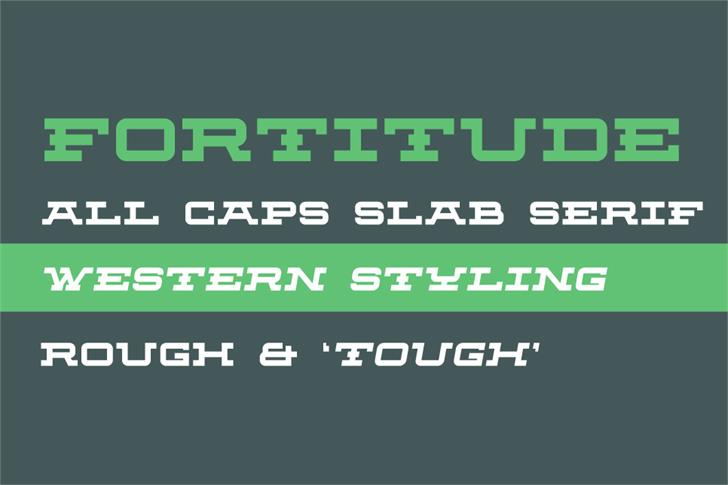 Fortitude font by Out Of Step Font Company
