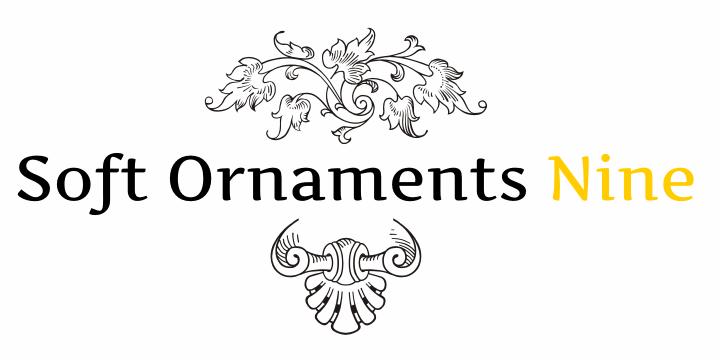 Soft Ornaments Nine font by Intellecta Design