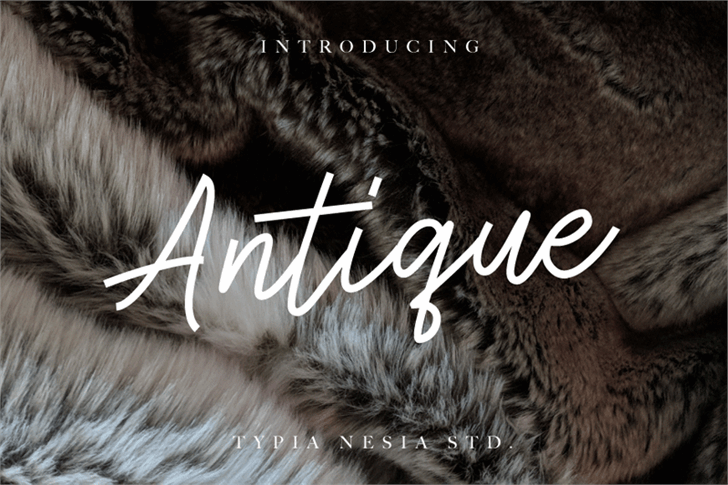 Antique Demo font by Typia Nesia
