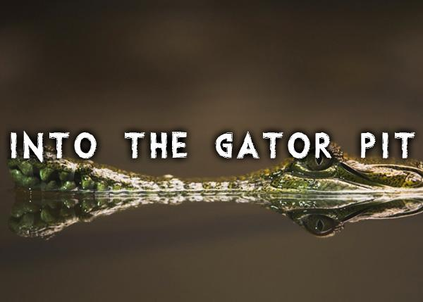 Into the Gator Pit font by Chris Vile