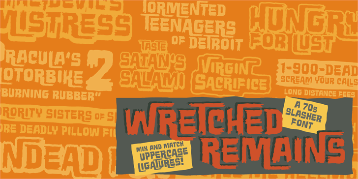 Wretched Remains BB font by Blambot
