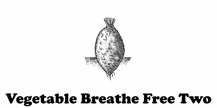 Vegetable Breathe Free Two font by Intellecta Design
