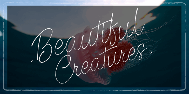 Beautiful Creatures font by Octotype