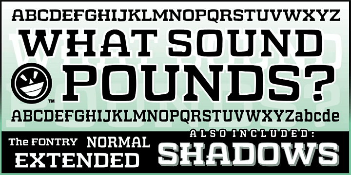 WHAT SOUND POUNDS? font by the Fontry