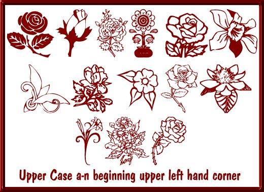 Floral Design font by Moonlight Designs