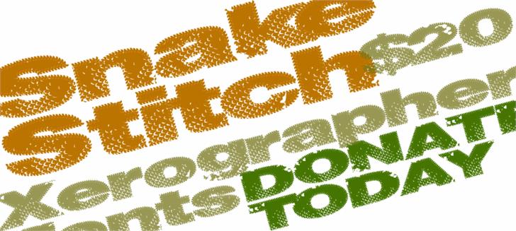 SnakeStitch font by Xerographer Fonts