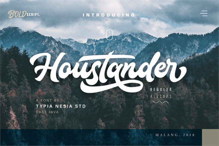Houstander Demo font by Typia Nesia