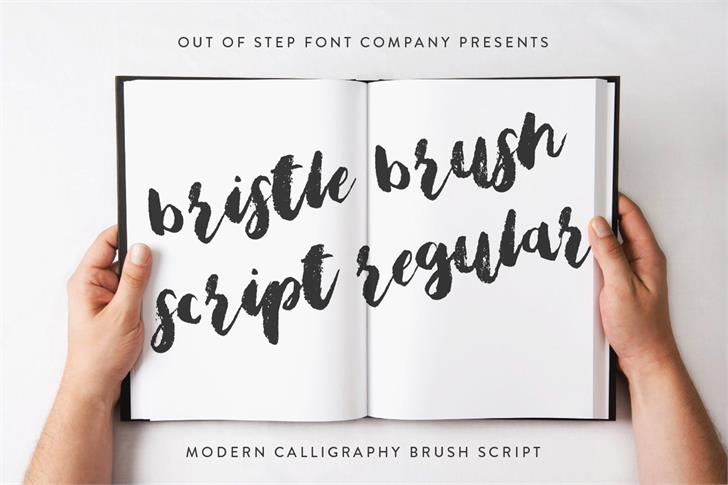 Bristle Brush Script Demo font by Out Of Step Font Company