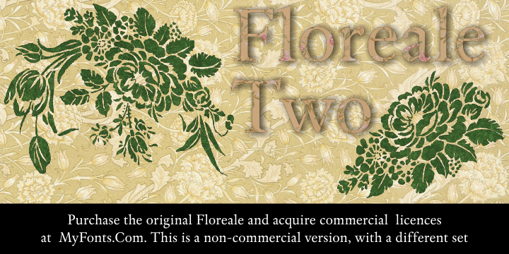 Floreale Two font by Intellecta Design